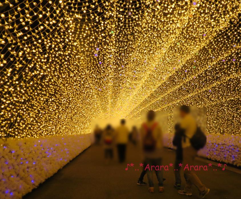 開催初日のなばなの里光のトンネル