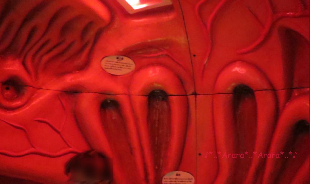 からだのひみつ大冒険「鼻の旅」中画像