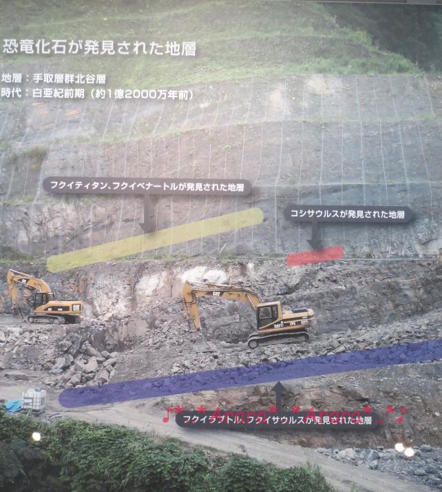 勝山市で化石が見つかったところ画像