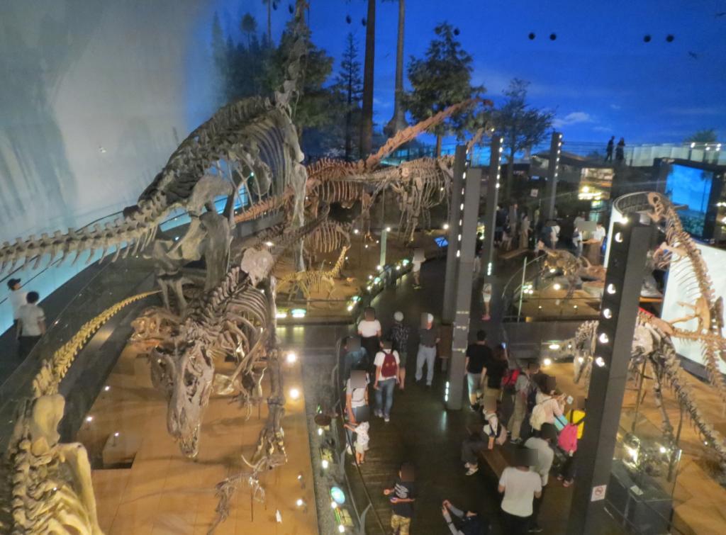 恐竜博物館の2階から展示会場のながめ画像