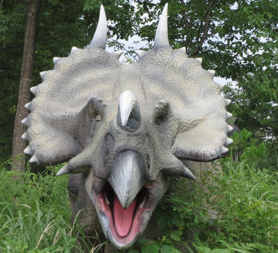 勝山ディノパーク「エイニオサウルス」画像