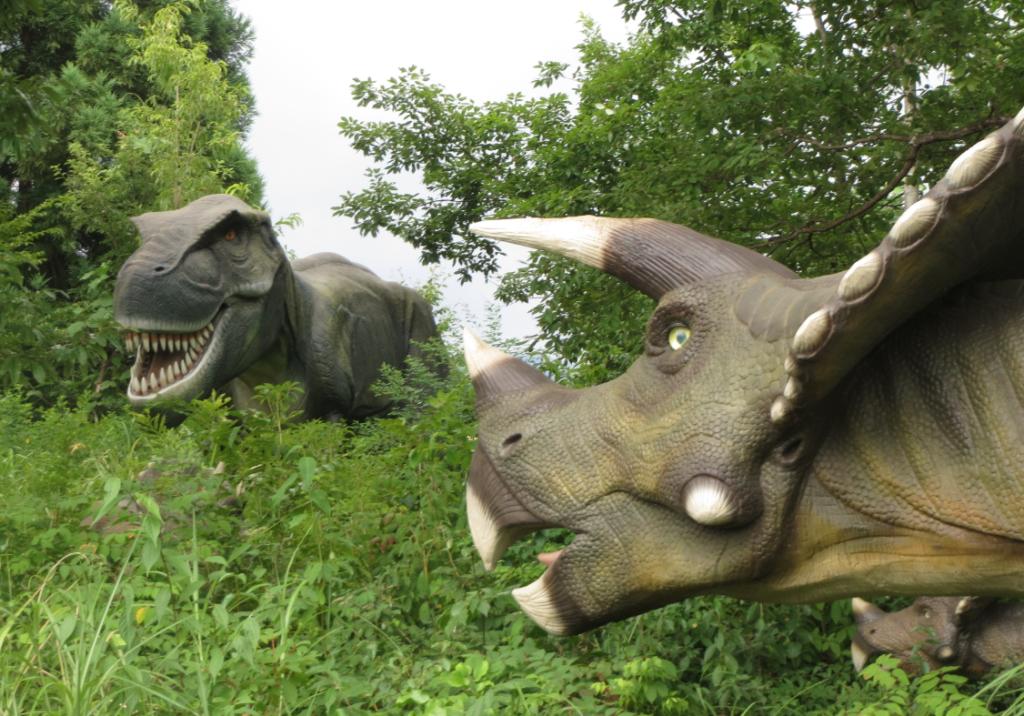 勝山ディノパーク「ティラノサウルス」と「トリケラトプス」の対決画像