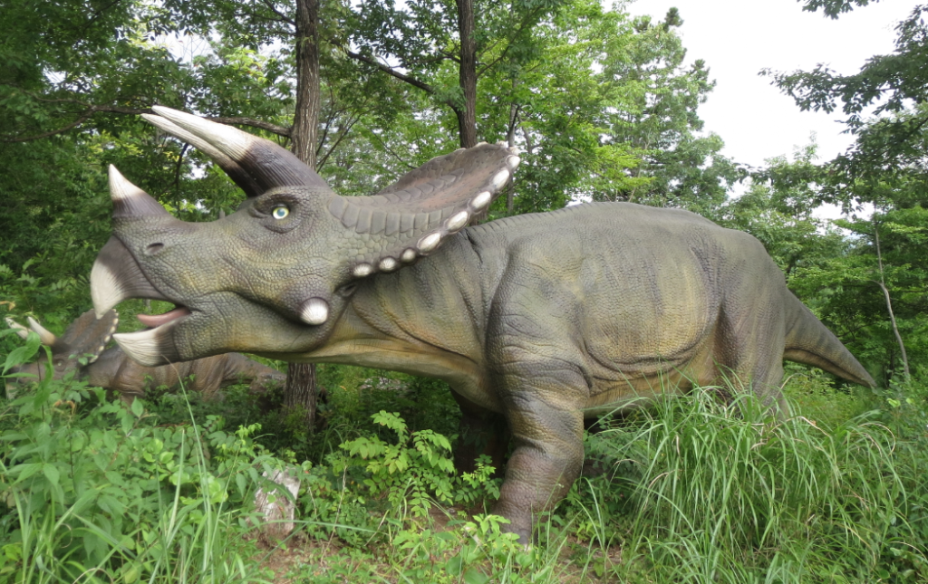 勝山ディノパーク「トリケラトプス」画像
