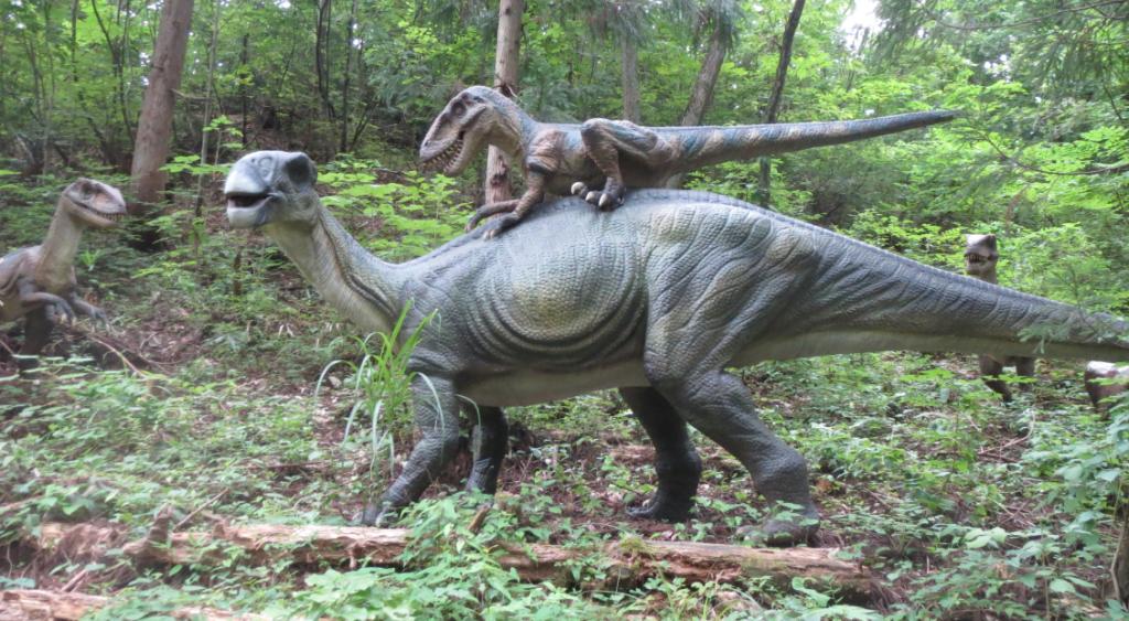 勝山ディノパークの草食恐竜「テノントサウルス」と肉食恐竜「ディノニクス」画像