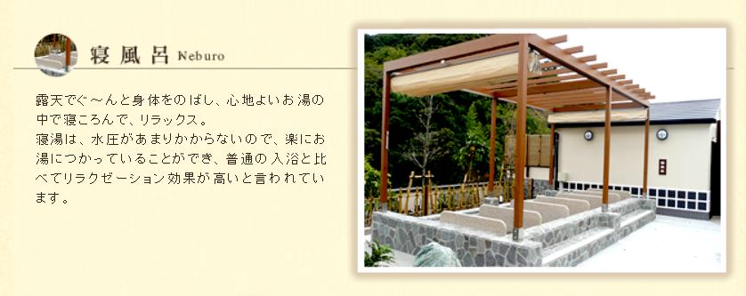 とれとれの湯の寝風呂画像